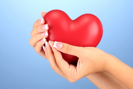Red heart in woman's hands, on blue background close-up photo