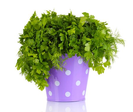 Colorful bucket with parsley and dill isolated on white photo