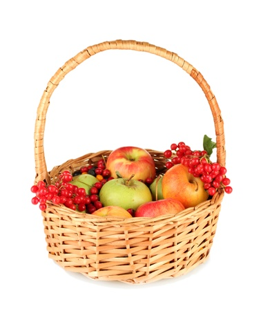 crop of berries and fruits in a basket isolated on white photo