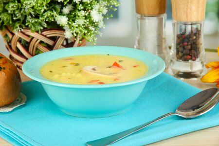 Fragrant soup in blue plate on table on window background close-up Stock Photo - 15661610