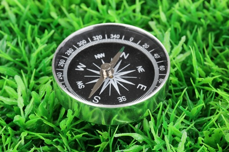 compass on green grass Stock Photo - 15689354