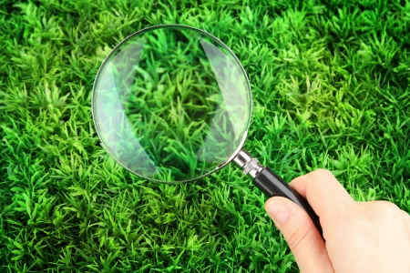magnifying glass in hand on green grass