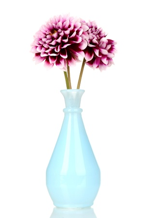 beautiful purple flowers in vase isolated on white photo