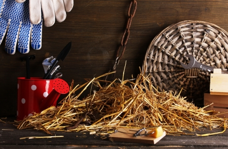 Mousetrap with a piece of cheese in barn on wooden background Stock Photo - 15729680
