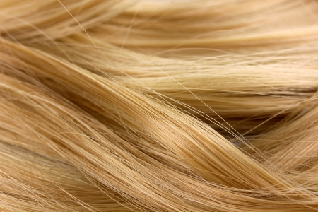 textura pelo: Fondo rizado cabello rubio