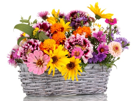 bunch up: beautiful bouquet of bright flowers in basket isolated on white