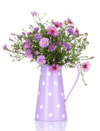 regando plantas: hermoso ramo de flores de color p�rpura en regadera aislado en blanco