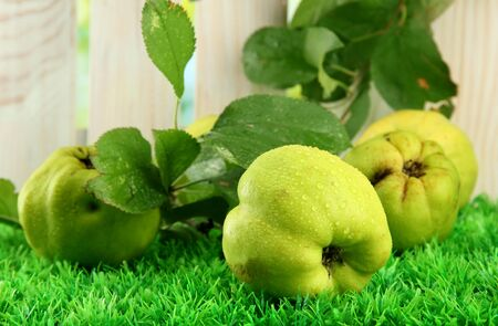 quinces: sweet quinces with leaves, on grass Stock Photo