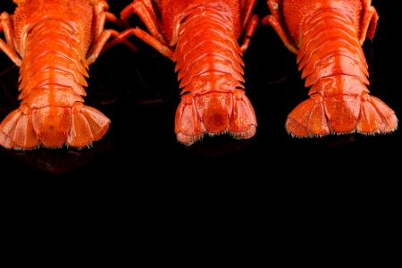 tailes: crayfish tailes isolated on black Stock Photo