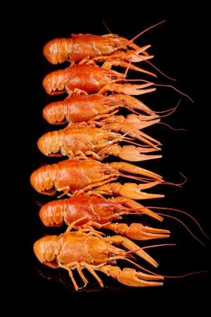 Tasty boiled crayfishes isolated on black Stock Photo