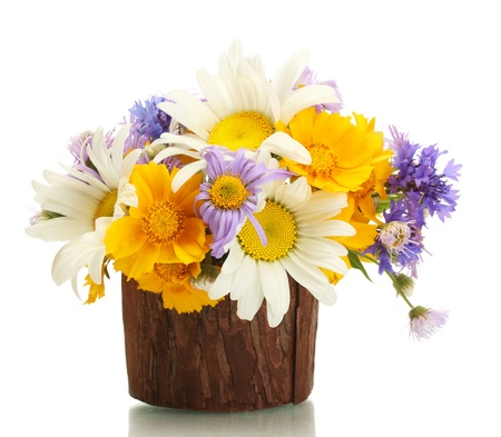 beautiful bouquet of bright  wildflowers in wooden flowerpot, isolated on white