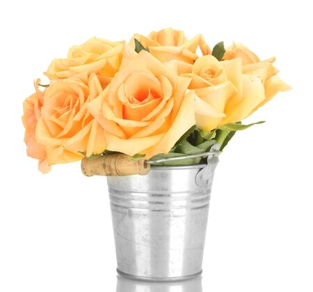 beautiful bouquet of roses in bucket isolated on white  photo