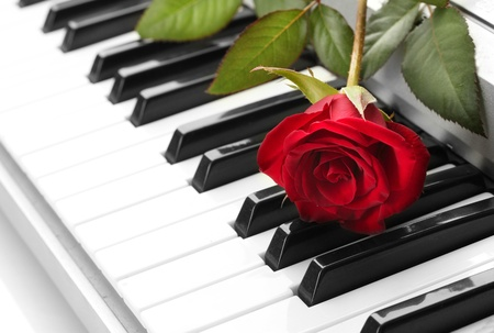 background of synthesizer keyboard with rose Stock Photo - 15746961