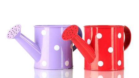 Purple and red watering cans with white polka-dot isolated on white Stock Photo - 15742374