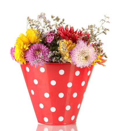 Red bucket with white polka-dot with flowers isolated on white Stock Photo - 15742645