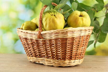 sweet quinces with leaves in basket, on green background Stock Photo - 15748026