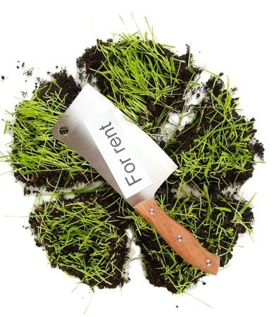 Green grass with ground as concept of land sale isolated on white Stock Photo - 15749242