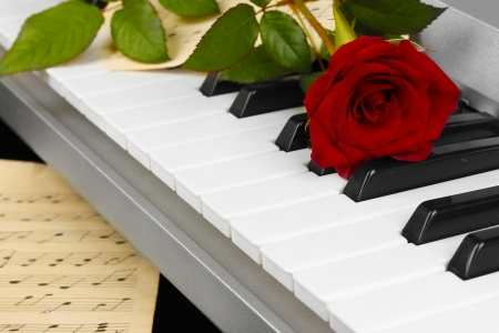 octave: background of piano keyboard
