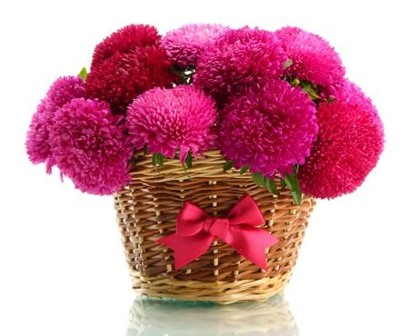 ramo flores: flores rosadas del aster en la canasta, aislados en blanco