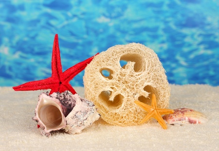 fibrous: Loofah on color background Stock Photo
