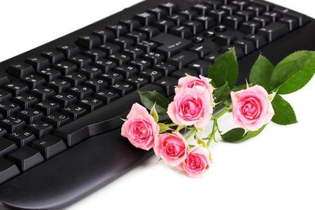 footsie: Pink roses on keyboard close-up internet communication Stock Photo