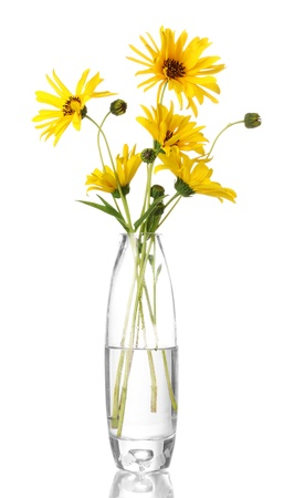 beautiful yellow flowers in vase isolated on white Stock Photo - 15870198