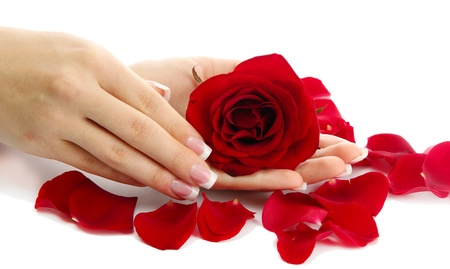 Beautiful woman hands with rose, isolated on white photo