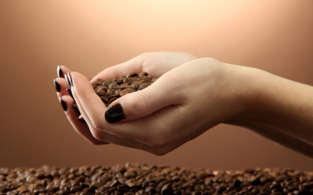 female hands with coffee beans, on brown background Stock Photo