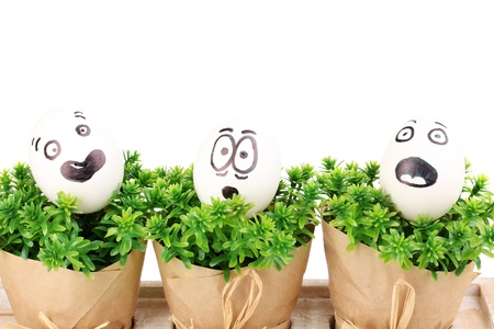White eggs with funny faces on green bushes photo