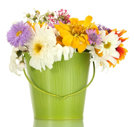 beautiful bouquet of bright  wildflowers in green metal bucket, isolated on white photo