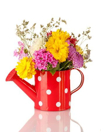 Red watering can with white polka-dot with flowers isolated on white Stock Photo - 15994594