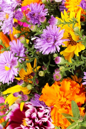beautiful bouquet of bright flowers close-up photo