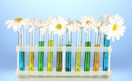 test tube holder: flowers in test tubes on blue background