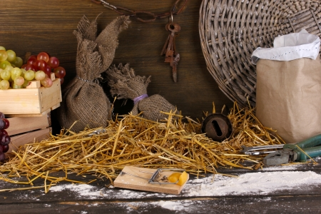 Mousetrap with a piece of cheese in barn on wooden background Stock Photo - 16107147