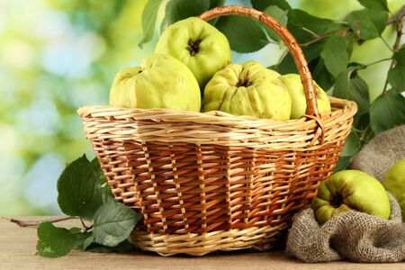 sweet quinces with leaves in basket, on green background Stock Photo - 16107102