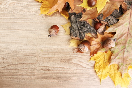 brown acorns on autumn leaves, on wooden background Stock Photo - 16107394