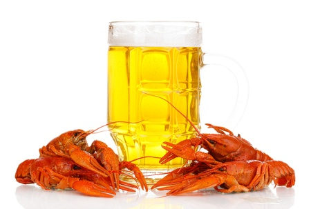 Tasty boiled crayfishes and beer isolated on white