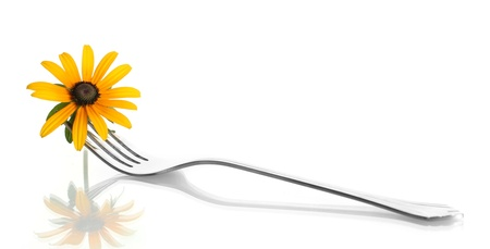 fork and flower, isolated on white photo