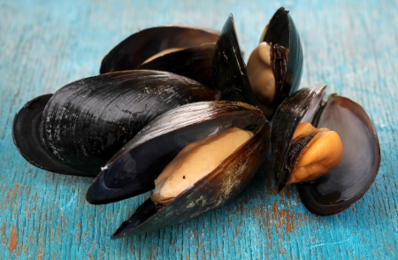 Mussels in shell on blue wooden table photo