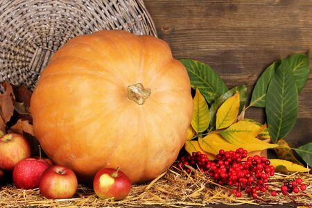 tuberous: Excellent autumn still life with pumpkin on straw on wooden background