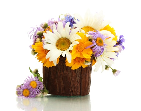 beautiful bouquet of bright  wildflowers in wooden flowerpot, isolated on white photo