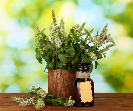 Essential oil and mint on green background close-up Stock Photo - 16292139