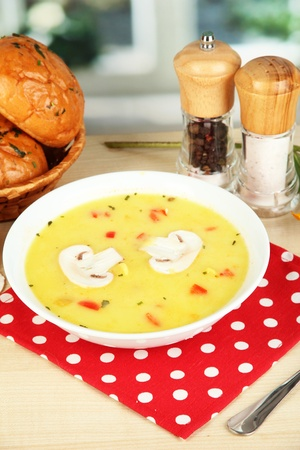 Fragrant soup in white plate on table on window background close-up Stock Photo - 16283198