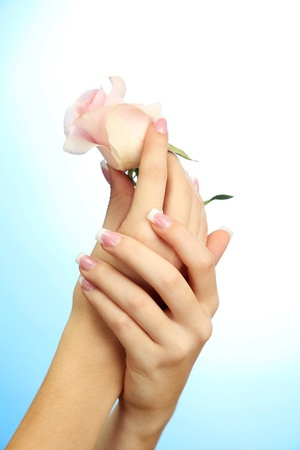 nail salon: Beautiful woman hands with rose, on blue background