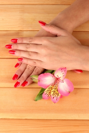 woman hands  with flower on wooden background Stock Photo - 16292179