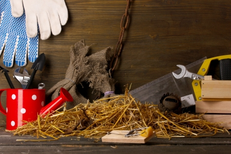 memorabilia: Mousetrap with a piece of cheese in barn on wooden background Stock Photo