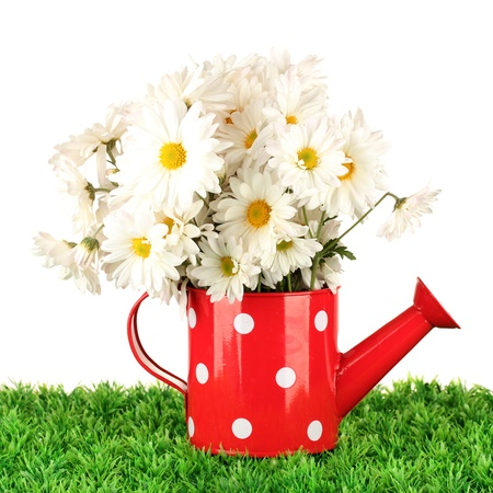 Flowers in vase on grass isolated on white photo