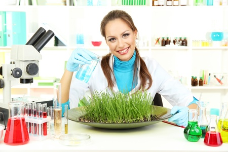 Young female scientist is conducting experiments with plants in  laboratory  Stock Photo - 17130438