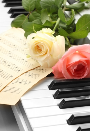 background of piano keyboard with roses Stock Photo