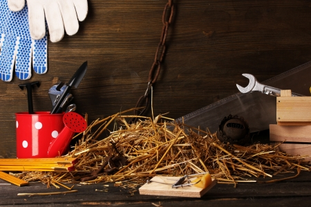 Mousetrap with a piece of cheese in barn on wooden background Stock Photo - 16414649
